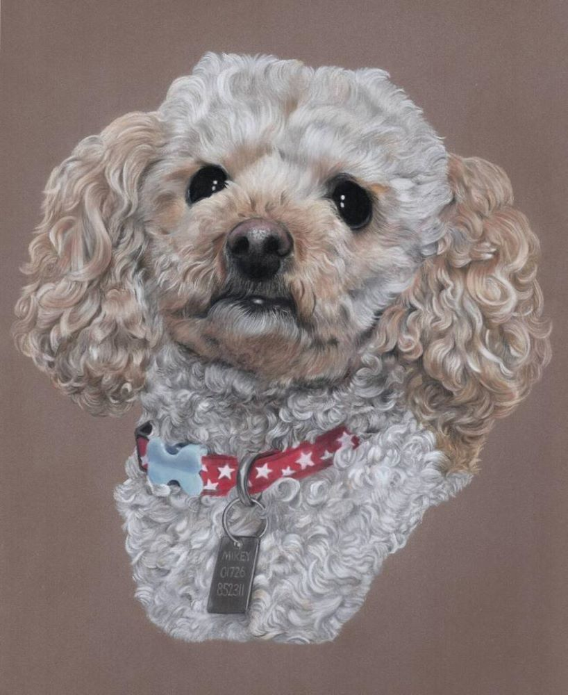 Mikey_Pastel_Portrait_Tamsin_Dearing_Copyright_2021