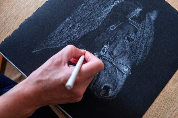 Tamsin_Dearing_Drawing_Horse_White_Pencil_on_Black